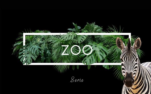 Serie / Zoo